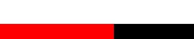 Swissbasket Logo
